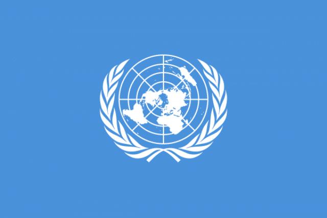 Дизайн макетов Флага общественных организаций