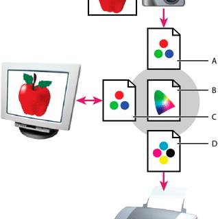 Сведения о цветовых профилях